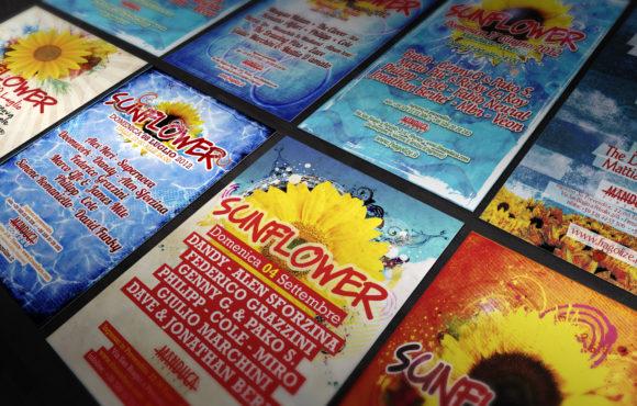 Flyers Sunflower