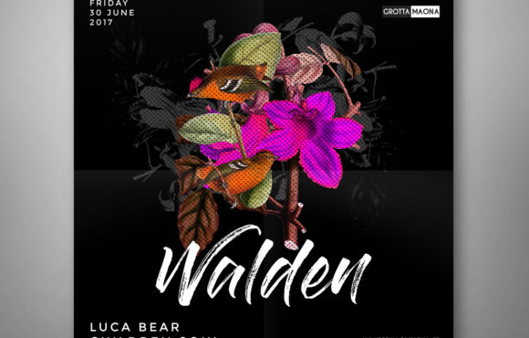 Flyer Walden